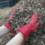Ściółkowanie ogrodu- dlaczego warto to robić?