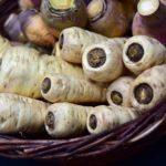 Pasternak- zapomniane, zdrowe warzywo- uprawa, charakterystyka